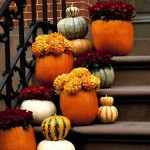 Pretty autumn-colored flowers in hallow pumpkins